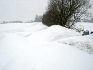 vinter11