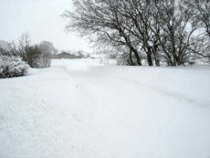 vinter12