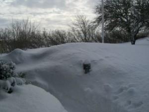 vinter14